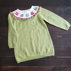 Toddler Girl Green Sweater Dress with Owl Design